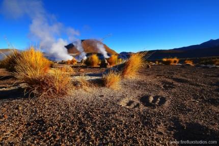 Steaming Desert 2