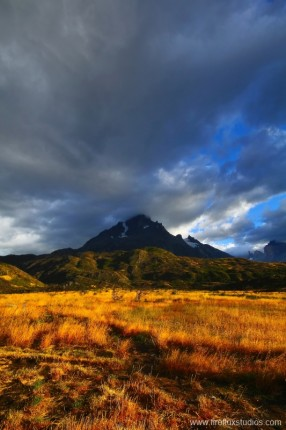 Fields Of Patagonia 2