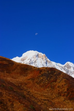 Annapurna South Moon Rise