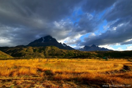 Fields Of Patagonia